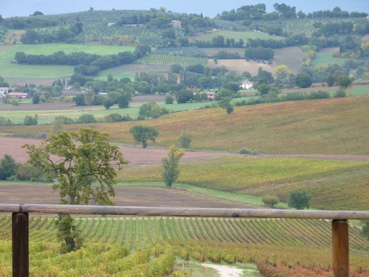 Fall in Bevagna