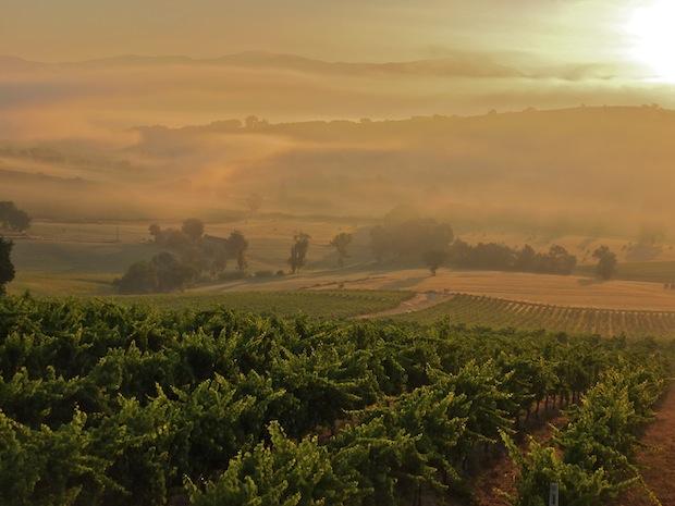 Umbrian sunrise view from Genius Loci Bevagna