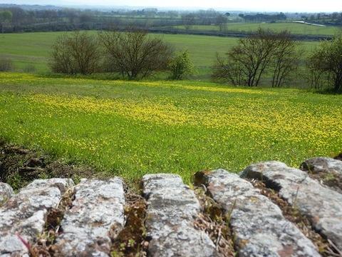 gorgeous umbria countryside