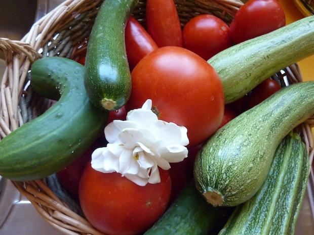 Umbria fresh vegetables from the garden