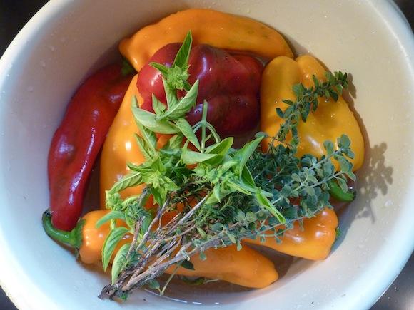 Umbria September bell peppers