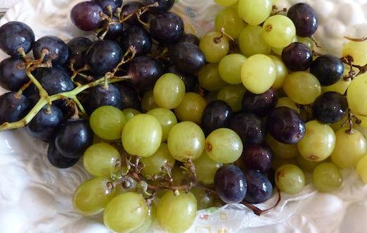 Umbrian September grapes