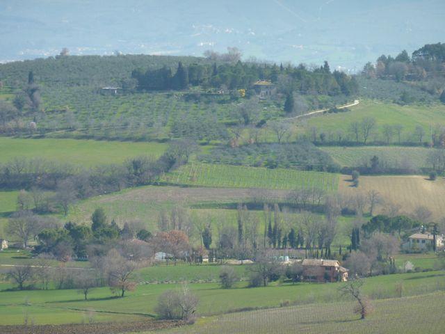 Umbrian spring