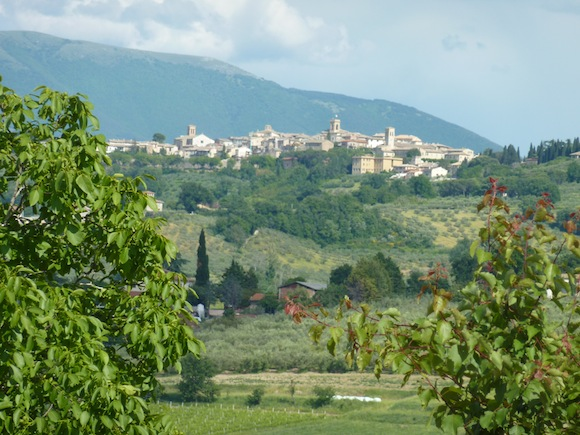 Montefalco as seen from Genius Loci