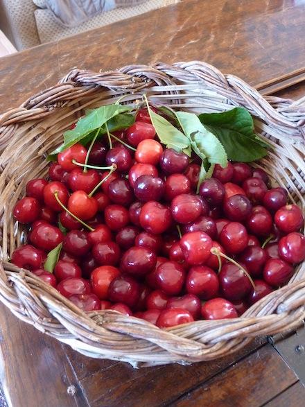 Umbria summer fruit