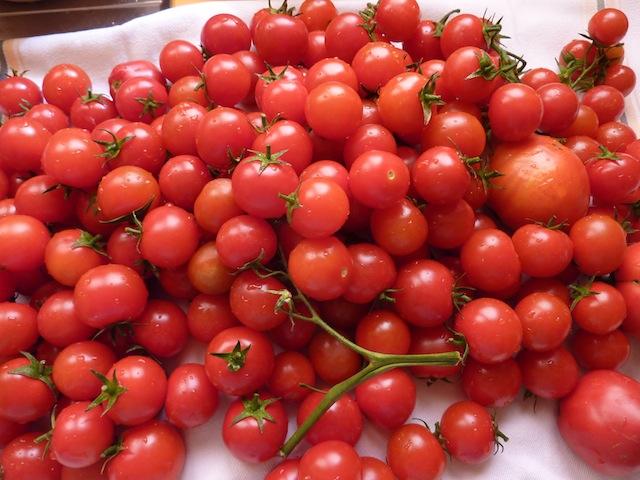 Umbrian summer cherry tomatoes