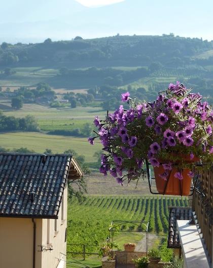 Genius Loci Umbria - view of summer mornings
