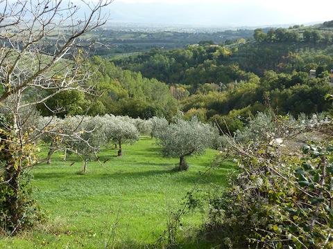 Beautiful Bevagna area
