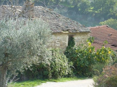 Umbria farmhouses