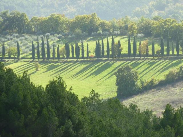 hills above Bevagna