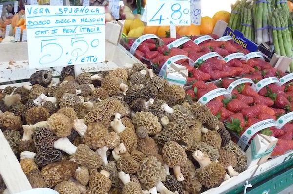modena market - mushrooms
